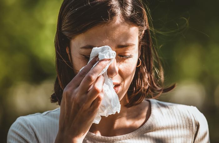 Allerginen Nuha Vai Flunssa